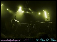image pivotroma_06-11-08_-13-jpg