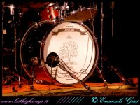 image joycutgost-t-ree-festival-bo-02-07-09_-13-jpg