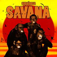 cover_appaloosa_copia_1