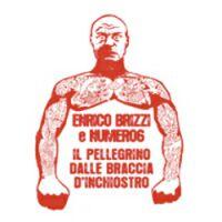 enrico_brizzi___numero_6_-_il_pellegrino_dalle_braccia_dinchiostro