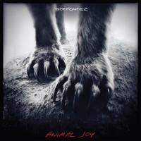 Shearwater_animal-200x200