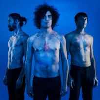 The-Zen-Circus_cover_Lultima-casa-accogliente_2