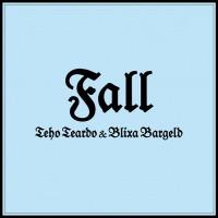 recensione_tehoteardoeblixabargeld_Fall_IMG_201704